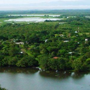 Ante el cambio climático Costa Rica protegerá sus humedales