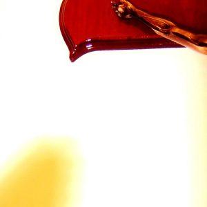 Jesús es el gran Padecedor del dolor humano, dijo en Papa el Domingo de Ramos