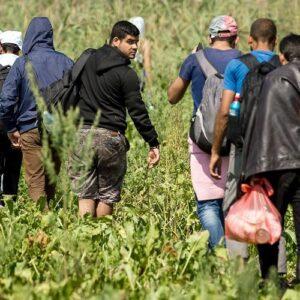 Guatemala: el drama de migrantes y refugiados nos interpela