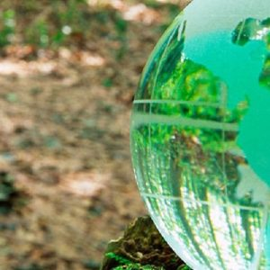 Los impuestos ambientales ¿son una solución?