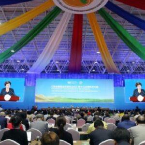 El Papa, en mensaje a la cumbre ONU, elogia los esfuerzos contra la crisis ecológica
