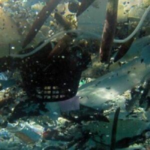 Una mancha de plástico en el Pacífico de 2 millones de km. cuadrados