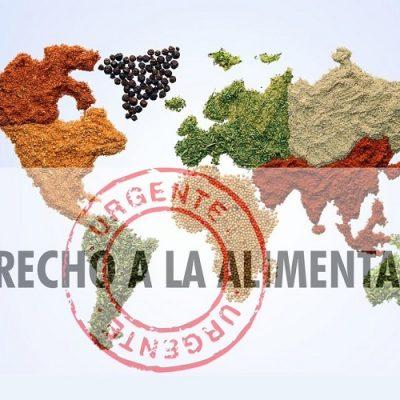"""Observador permanente de la Santa Sede ante la FAO sobre el reto Hambre Cero 2030: """"Tenemos que invertir en paz"""""""