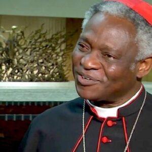 """Cardenal Turkson: """"Si se aborda con el enfoque correcto, la lepra se podrá erradicar"""""""