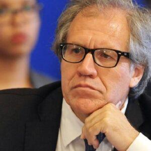 Informe de la OEA cuestiona la elección del presidente de Honduras