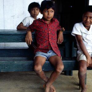 En busca del medioambiente y la justicia económica en la Pan-Amazonia