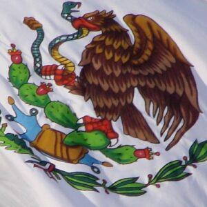 Iglesia en México: situación de alarma por denuncia al narcotráfico