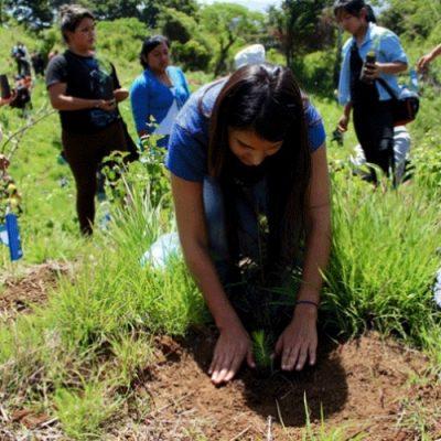 ONU lanza iniciativa para proteger a los defensores del medio ambiente