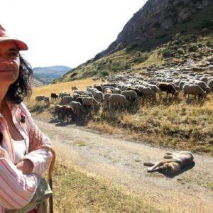 """El Evangelio que anunciamos las mujeres. """"De ovejas y pastoras"""""""