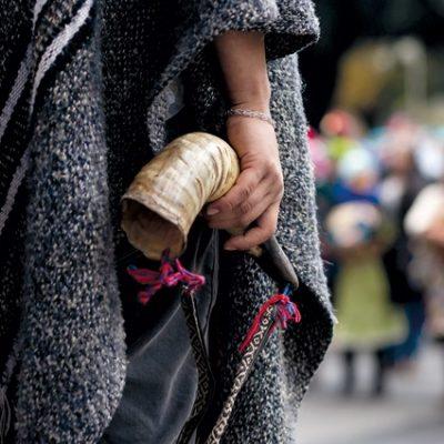 Estado chileno y pueblo mapuche: nuevo Gobierno, viejas políticas