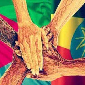 Señales de paz: Etiopía tiende una mano a Eritrea