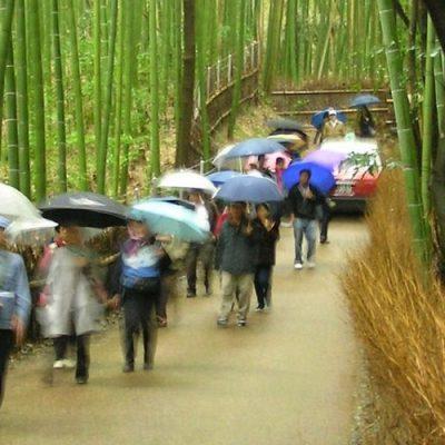 Japón, una sociedad singular