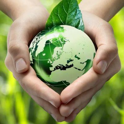"""El Vaticano impulsa un """"movimiento masivo"""" para cuidar el planeta"""