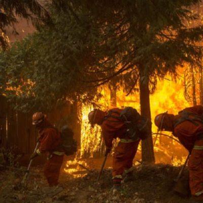 La incidencia del cambio climático en los incendios forestales de California