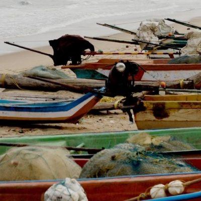 """Cardenal Turkson: """"Que sean reivindicados los derechos de los pescadores"""""""