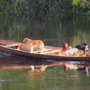 REPAM: Llamamiento a la defensa de territorios y pueblos originarios