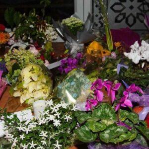 Dolor y oración del Papa por las víctimas del atentado en Nueva Zelanda