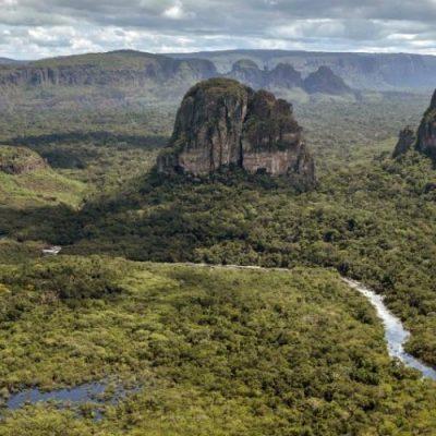 Cardenal Baldisseri habla sobre la Amazonía y la importancia de su cuidado