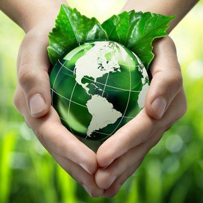 """El Vaticano se vuelve """"plastic free"""", con la inspiración de la encíclica verde del Papa"""