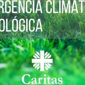 Organizaciones de la sociedad civil declaran alerta climática