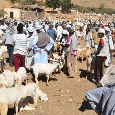 Eritrea: La comunidad católica, amenazada por las acciones del Gobierno