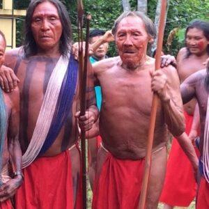 Bolsonaro, respete la Constitución brasileña y deje de pronunciar discursos prejuiciosos, racistas y abusivos contra los pueblos originarios