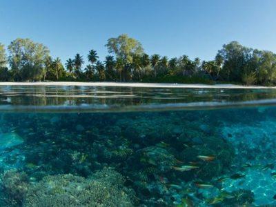 El nivel de los océanos sube desde la década de los años '60