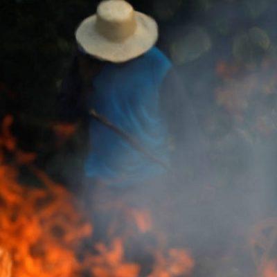 CELAM ante incendios de bosques: Levantamos la voz por el Amazonas