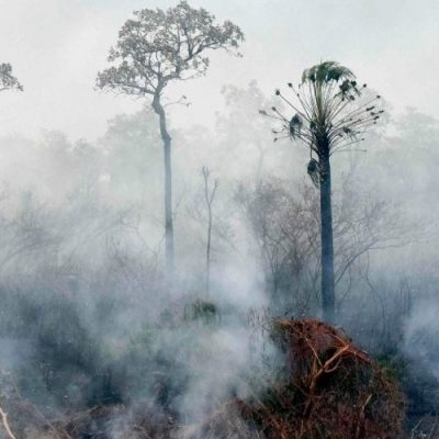 Obispos de Bolivia: Clamor ante la catástrofe de los incendios en la Amazonía
