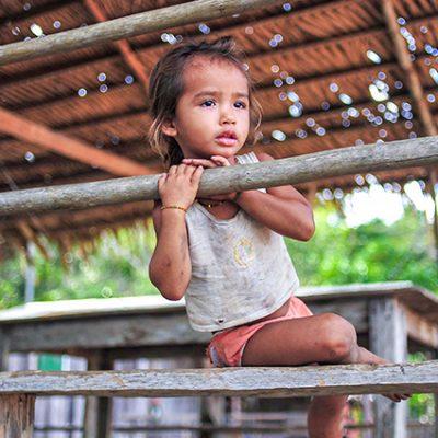 Quince valientes propuestas para el Sínodo de la Amazonía