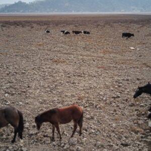 Por la sequía el gobierno de Chile declara zona de catástrofe la región de Valparaíso