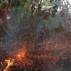 """Baltazar Porras, sobre los incendios en el Amazonas: """"Otros intereses nada claros están interviniendo"""""""