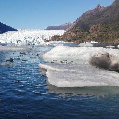 En Chile se han perdido unos 2 mil km2 de glaciares en cinco años