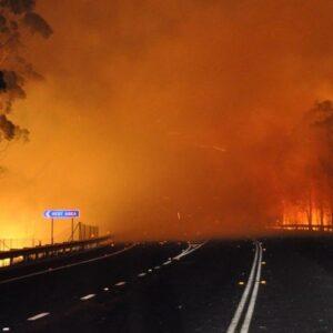 Los incendios forestales en Australia han arrasado con 600 mil hectáreas