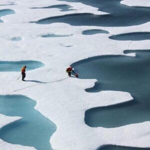 """Más de 11 mil científicos de 153 países declaran la necesidad de una """"emergencia climática"""""""