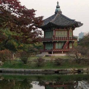 Corea del Sur: católicos aumentan casi un 50 por ciento en 20 años