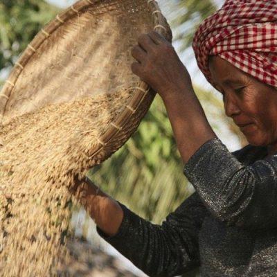 La FAO promueve un desarrollo económico con valores éticos para un mundo mejor