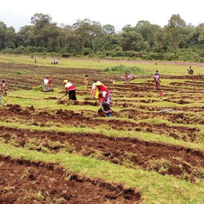 República Democrática del Congo: Mejorar las oportunidades de ganarse la vida de las supervivientes de la violencia sexual