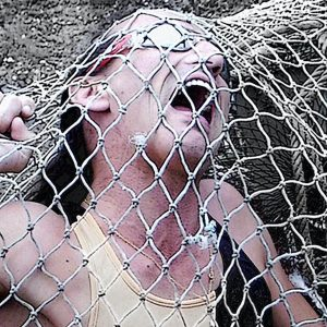 Caer en las redes