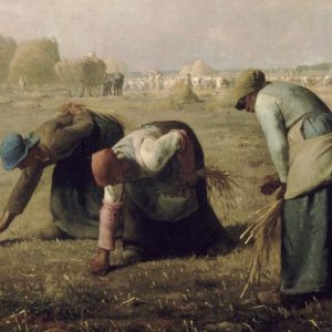 """El Evangelio que anunciamos las mujeres. """"Guardadoras de semillas"""""""