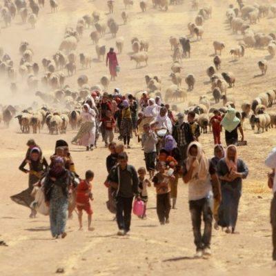 Denuncia de Amnesty: Miles de niños yazidíes, de esclavos a olvidados