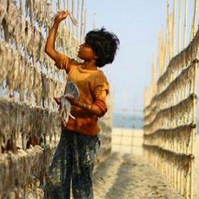 2021: Año de la ONU para la eliminación del trabajo infantil
