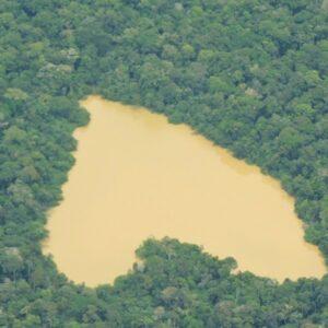 Brasil: Inversionistas católicos exhortan al gobierno a proteger la Amazonía