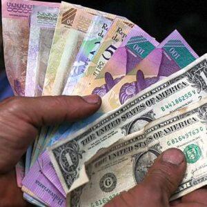 Venezuela: «Los dólares hacen la diferencia»