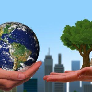 El Papa lanza la plataforma Laudato si': «Hay que perseguir la ecología integral»