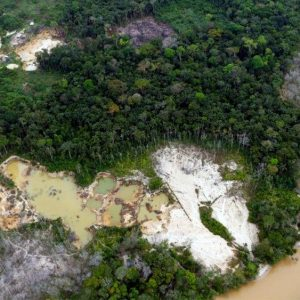 Incendios y deforestación: Factores que amenazan el equilibrio en la Amazonía