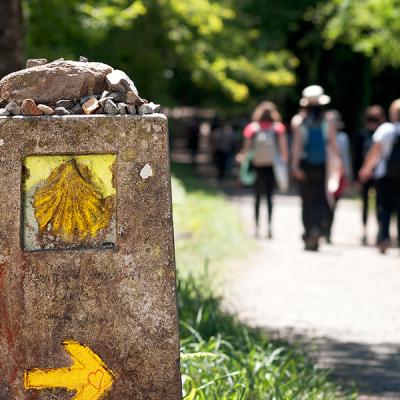 La peregrinación permite ahondar en lo esencial de la vida