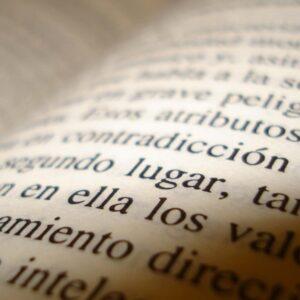 Palabras y más palabras